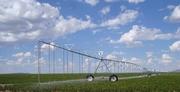 Продается действующий бизнес, Акмолинская область, сельское хозяйство