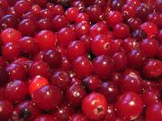 Продаётся ягода клюква