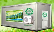 Гидропонное оборудование для выращивания готового корма. Кокшетау